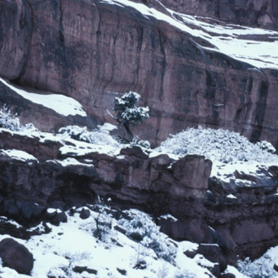 December visitors have a good chance of seeing the Grand Canyon dusted in snow.