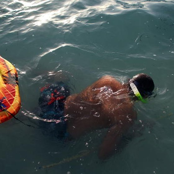 Best Places In Florida For Fishing: Places To Go Snorkeling In Pensacola, Florida