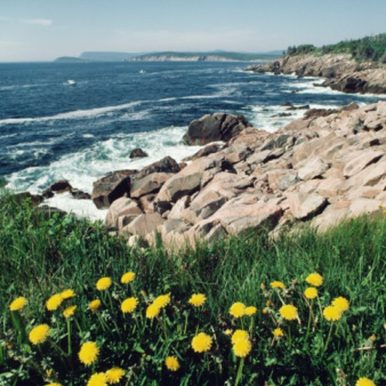 Cruisers to Canada's eastern provinces can explore Nova Scotia's Cabot Trail among many other port excursions.