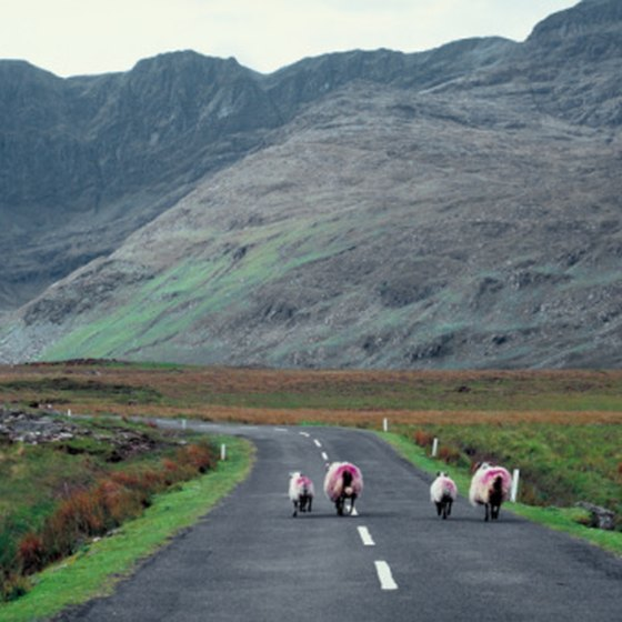 Many of Ireland's roads are narrow and winding.