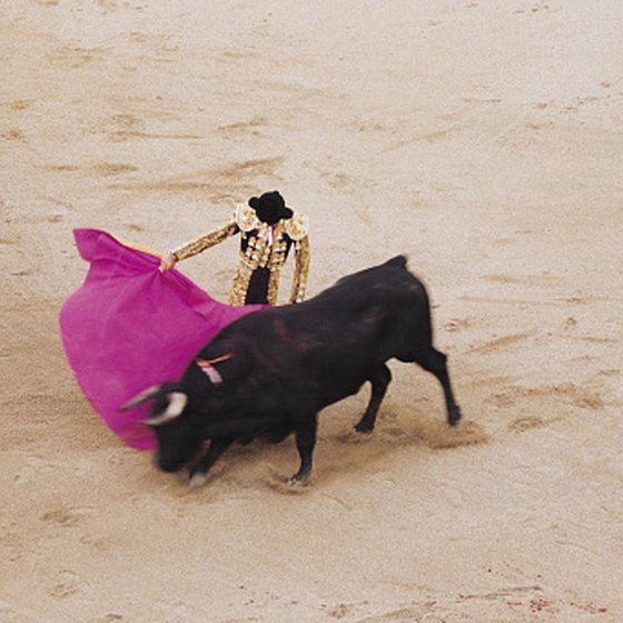 Visitors to Merida, Mexico, can see live bull fighting for themselves.