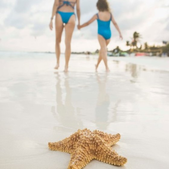 The white sand beaches, warm waters and tropical surrounds make Playa del Carmen a family-friendly destination.