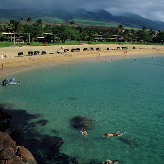 Snorkeling on Kaanapali Beach, Maui, north of the Hyatt Maui.