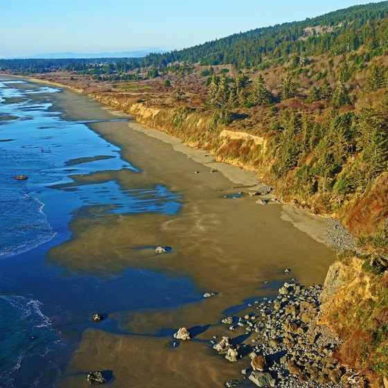 Beaches in Redwood National Park