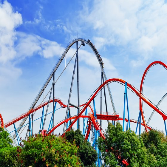 Amusement Parks in North Carolina or South Carolina With Roller Coasters
