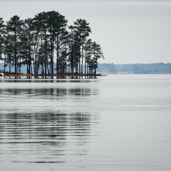Booking a Cabin in Lake Murray State Park