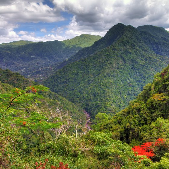 Top-Rated Places for Hiking in Puerto Rico