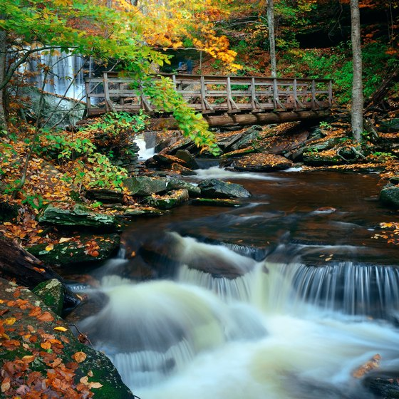 Places to Stay Near Ricketts Glen State Park in Pennsylvania