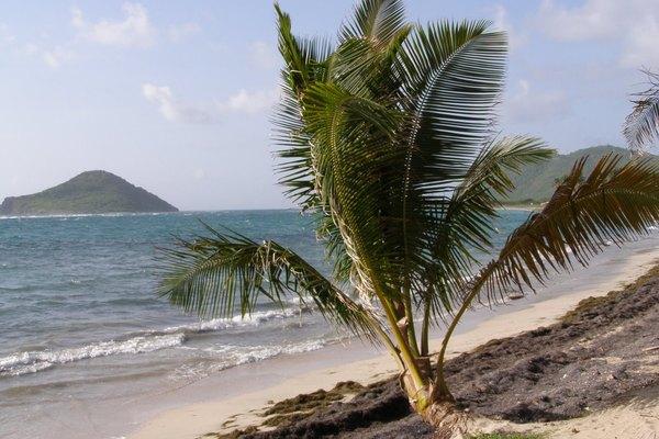 Visita Puerto Rico en tu viaje por las islas del Caribe.