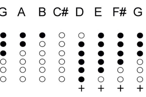 Tapando los distintos agujeros se consiguen tocar las diferentes notas de la escala musical.