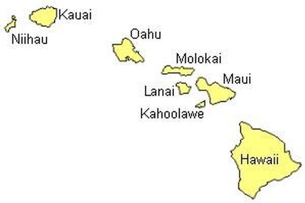 Disfruta tus vacaciones en las islas de Hawái.