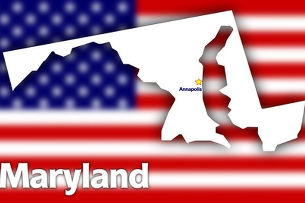 Look up Maryland license plate information on the Internet.
