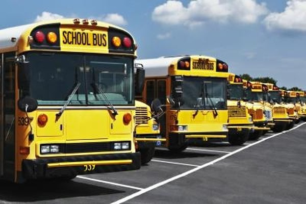 Buses may be used for short transport, like going to school, while coaches provide longer-distance travel.