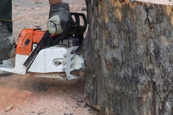 Fuel-powered chainsaws are just one of Tillotson carburetors many applications.