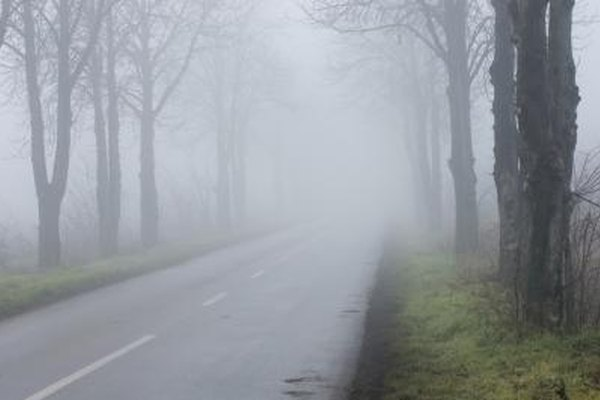 Use fog lights and low beams in foggy conditions.