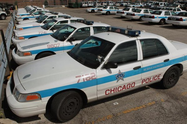 Row of Crown Victoria Police Interceptor cars in lot.