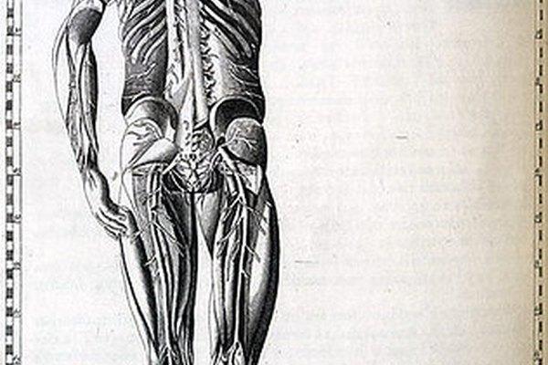 La mecánica corporal adecuada puede mejorar la postura.
