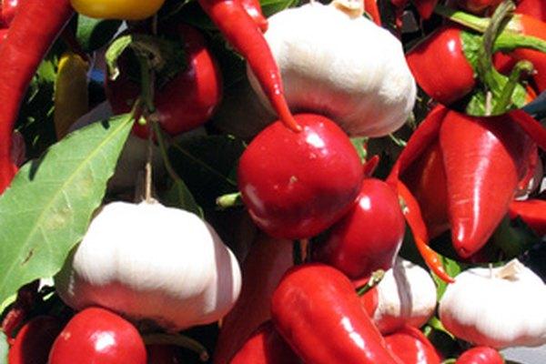 Conseguir el permiso para aceptar cupones de alimentos requiere la aprobación de la USDA.