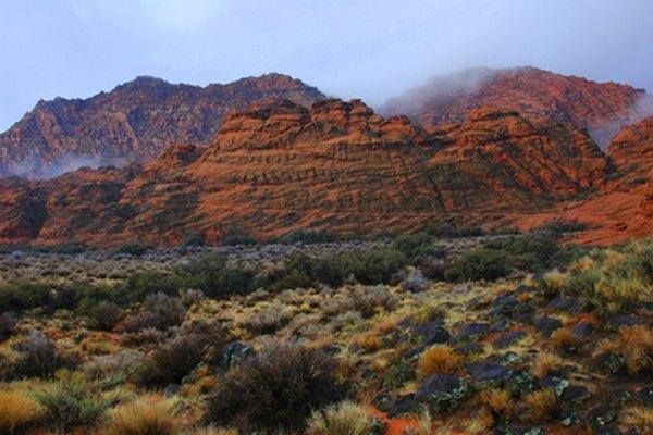 El desierto de Arizona, justo afuera de Sedona.