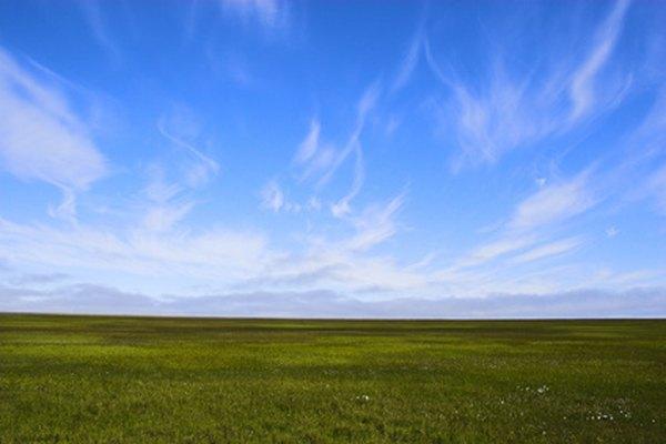 La escarcha permanente subyace en muchos de los ecosistemas de la tundra ártica del mundo.