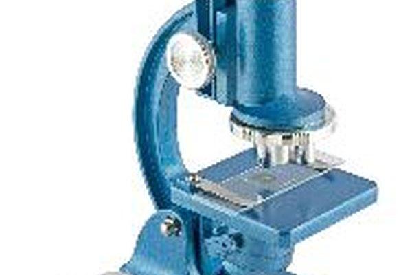 Un microscopio compuesto posee dos sistemas de lentes.