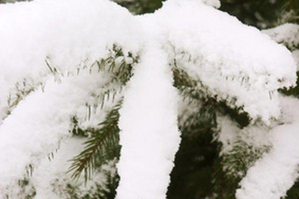 La nieve puede ser una hermosa cobertura de invierno independientemente de dónde caiga, hasta que llega la hora de quitarla.
