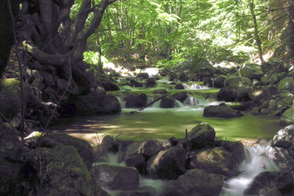 El acarreo de las aguas superficiales disuelve los elementos.