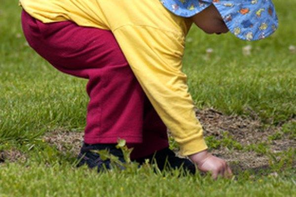 El niño comienza a establecer relaciones con otros niños, y el juego es una parte clave del proceso.