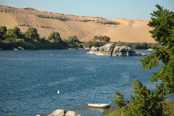 Se sabe que los cocodrilos del Nilo han comido humanos en las riberas de los ríos.