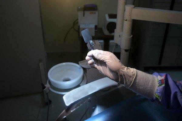 Los programas educativos de las escuelas dentales varían.
