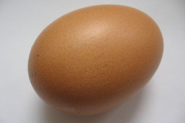 Evita que tu huevo se rompa en un concurso de caída de huevos.