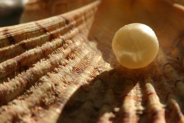 Las perlas han sido codiciadas por su belleza y brillo.