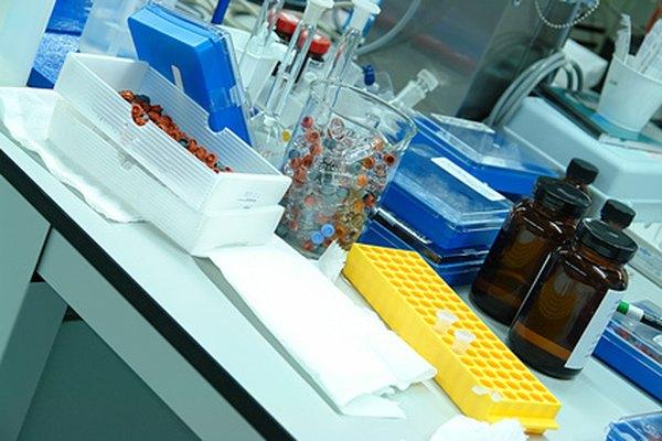 Equipo de laboratorio adecuado es necesario para la exitosa reducción de la benzofenona.