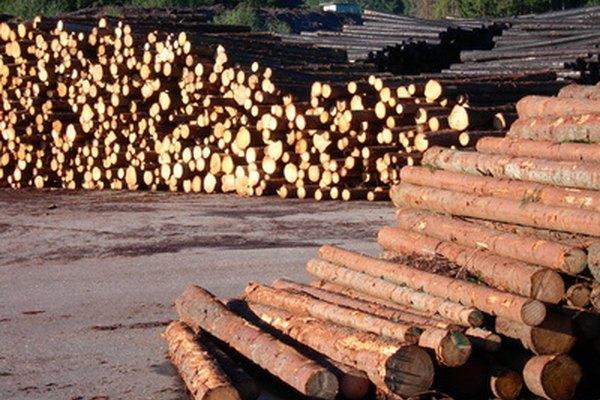 La madera pasa por un proceso de aserrado y químico para producir pulpa.