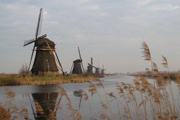 Holanda alberga una amplia variedad de vida silvestre.