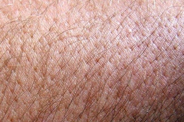 Los alquilpoliglucósidos son más populares en jabones, champús y jabones líquidos, ya que ayudan a eliminar la suciedad y la grasa de la piel sin irritarla.