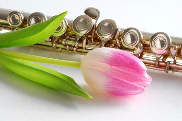 Limpia una flauta Yamaha después de cada uso para mantener buena calidad de sonido.