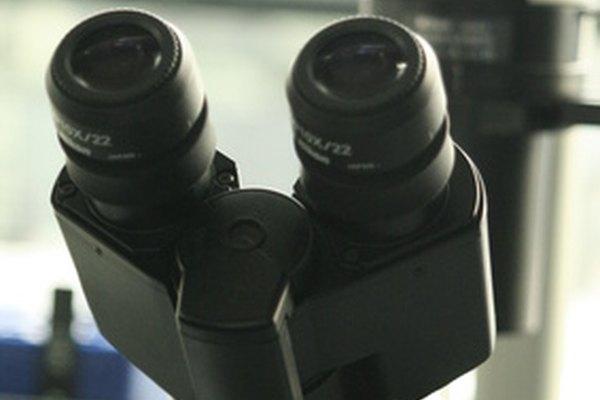 El microscopio electrónico de transmisión amplía imágenes a escala molecular.
