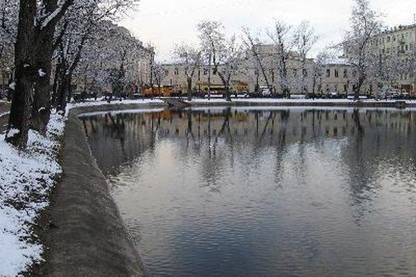 Imagen de un estanque en invierno.