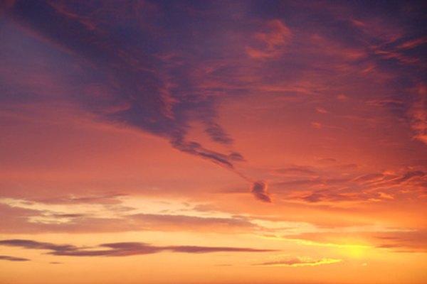 La luz solar es un factor abiótico importante en la selva tropical.