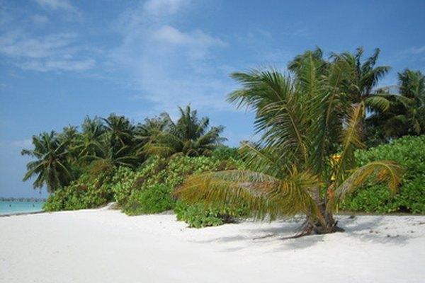 La presión atmosférica es una parte importante del clima de las islas y costas.