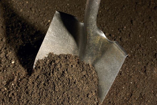 La filtración del agua depende de factores tales como el tamaño de las partículas del suelo y la profundidad del suelo.