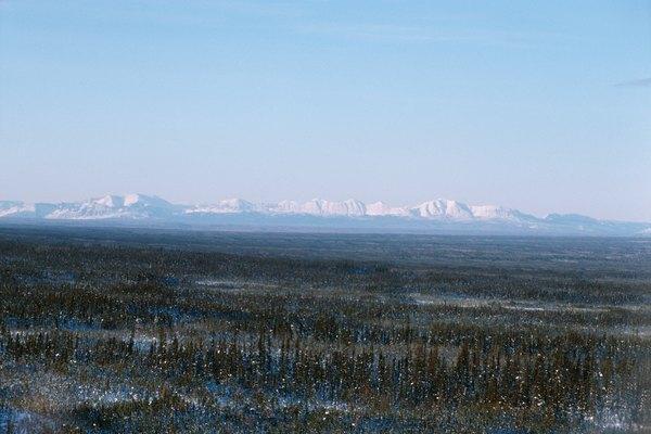 El ecosistema de la tundra tiene tres usos industriales.
