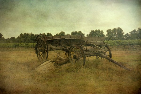 old coach in South Africa