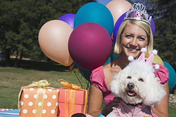 Woman and poodle with gifts and balloons