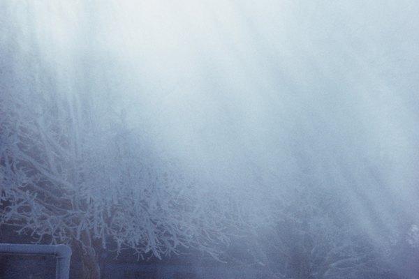 Cuando la nieve se convierte directamente en vapor de agua, esto es sublimación.