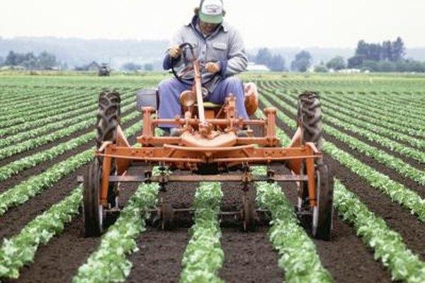 Trabaja al aire libre en la industria agrícola.