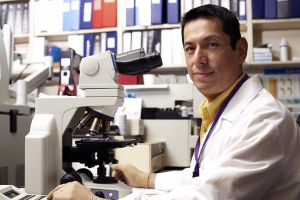 Para poder observar las bacterias en el microscopio, primero debes teñir el preparado.
