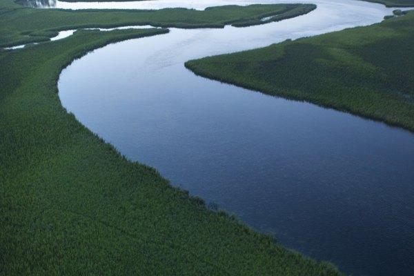 Los contaminantes suelen terminar en los cursos de agua.