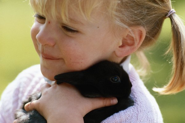 Girl (4-5) holding rabbit outdoors, close-up